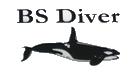Bs Diver