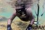 Гидрокостюм Cressi Cernia 5 мм для подводной охоты 0