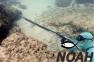 Арбалет Salvimar Metal 85 для подводной охоты 12