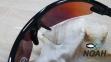 Очки CRESSI солнцезащитные VENTO BLACK/ORANGE LENS, оранжевые 5