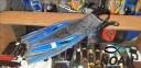 Ласты с открытой пяткой Zelart ZP-451 для плавания,  синий 0