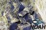 Гидрокостюм Sargan Сенеж 10.5 мм для подводной охоты 9