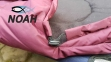 Зимний спальный мешок Verus Polar Marsala до - 20°C (утепленный) 4