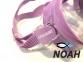 Маска Cressi F1 Frameless Lilac для плавания
